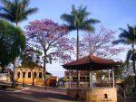Polícia prende dois homens e apreende adolescente, em Santo Antônio do Amparo, por tráfico de drogas