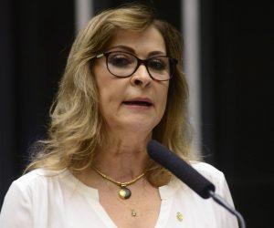 [Informe Parlamentar] Dâmina Pereira tem dois projetos aprovados em defesa dos direitos da mulher