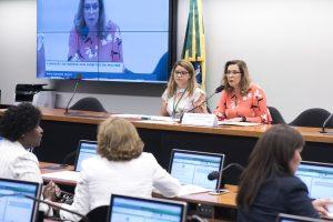 [Informe Parlamentar] Em Brasília, deputada Dâmina presidiu reunião que definiu Lei Orçamentária para  temáticas femininas