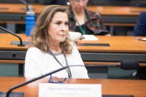 [Informe Parlamentar] Deputada Dâmina pede mais segurança na BR 265